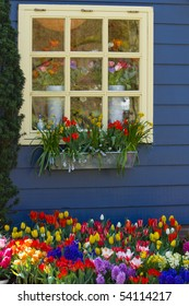 Window in blue wall with colorful flowers in spring