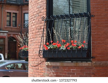 Window box decoration with bright red flowers of cyclamen and pusy willow branches