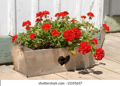 window box with a heart cutout filled  with Geranium flowers