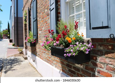 Window Boxes in downtown Charleston