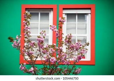 window and cherry