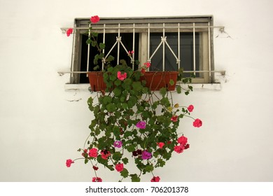Window in the city