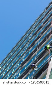 Window cleaners hang on ropes outside of a high-rise building and do the risky job of window cleaning.