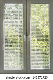 Window with closed blinds overlooking the garden