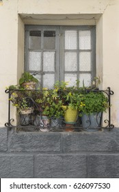 Window with curtains and decorated with pots
