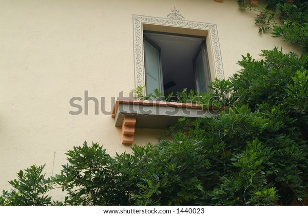 a window with decoration  with foliage