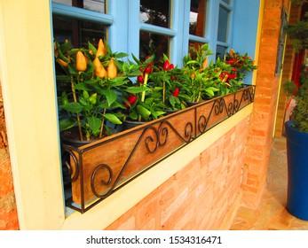Window and flowerbox, Visconde de Maua, Resende, State of Rio de Janeiro, Brazil.