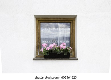 window with flowers and shutters