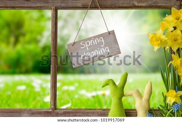 Fenster, grüne Wiese, Frühlingsreinigung