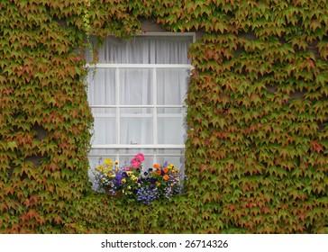 Window in Kilkenny, Ireland