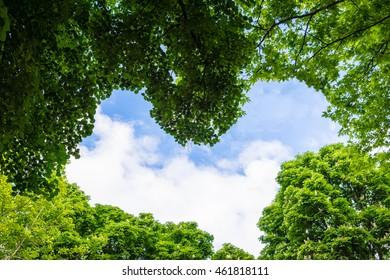 window leaf to blue sky heart shape