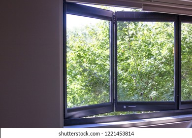 window overlooking green garden
