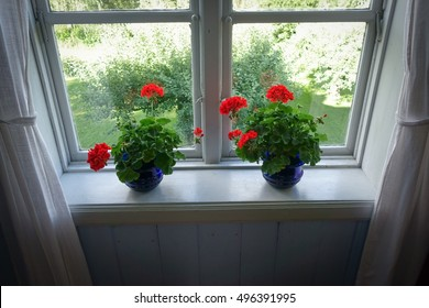 Window pane with red flowers