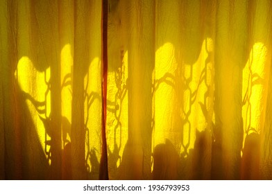 window photographed with summer sunlight reflection