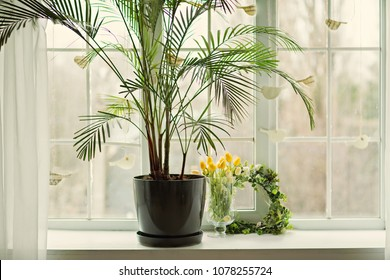 Window sill, french window with decor and flowers, white interior and plants on the sill.