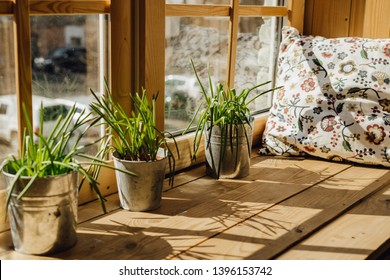 Window Sill Pillow for Rest with Grass Plant Pot. Home Rest Space on Kitchen Windowsill Interior with Sunlight. Spring Bucket Flowerpot Grow at Daylight on Bright Wooden Apartment Balcony