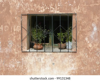 Window sill of a traditional house with iron bars and plant pots in northern Argentina.