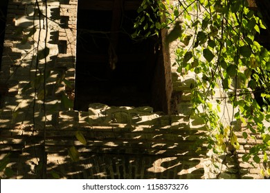 a window in a stone ancient building, in a forest in the rays of the sun