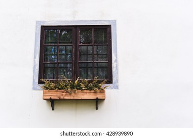 the window with the tray of flowers on a light wall