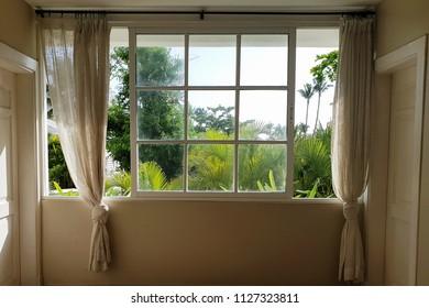 Window / View from window