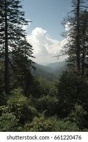 Window view of Appalachian Mountains through the trees