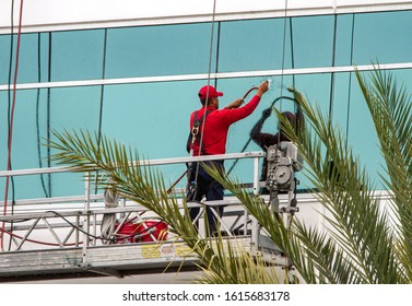 Window washers in red shirts cleaning tinted windows of a commercial building. Palm tree branches in foreground