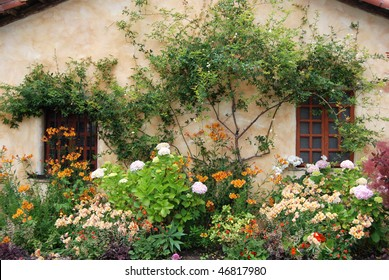 Windows Background with flowers