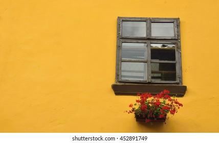 Windows of color 1