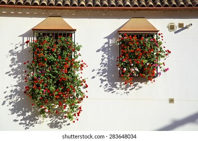 Windows decorated with flowers in Cordoba Patios party.
