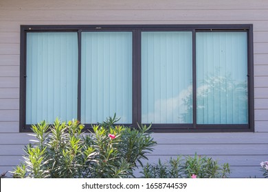 windows with uv protection Vertical curtain or blinds on wooden white wall, outdoor view