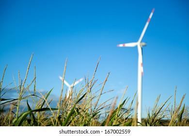 Windpark on a green field