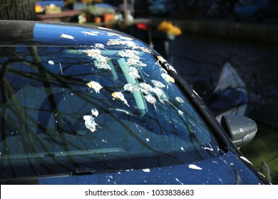 Windshield with lot of bird droppings.