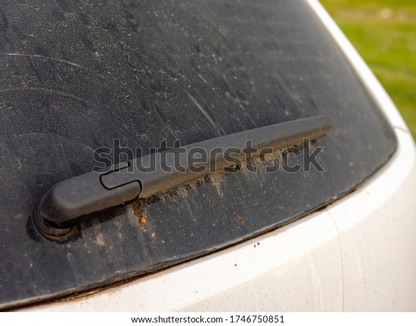 Windshield wiper used to remove dirt from a white car's rear window glass. Dirty windscreen wiper and back window of a car. Close up