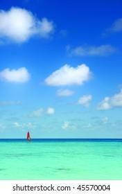 windsurfing at sea