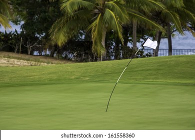 Windy Day for Golf