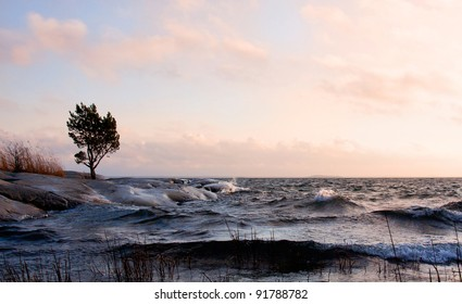 Windy evening at the archipelago in sweden.