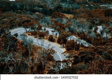 A windy mountain road in Dromana, VIC
