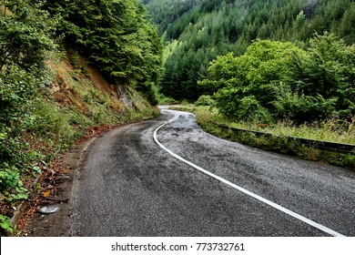 windy mountain road in Kopaonik National Park after rain, Serbia