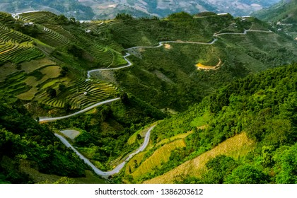 Windy road trough hill at terraced Rice fields in Ha Giang province, Vietnam