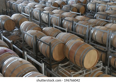 Wine aging in new oak barrels placing in rows