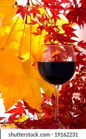 Wine. Autumn
