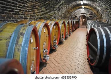 Wine barrel, South Moravia, Czech Republic, Europe
