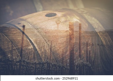 Wine Barrel and Vineyard Double Exposure outside in Retro Instagram Style