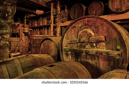 Wine barrels and casks in old cellar