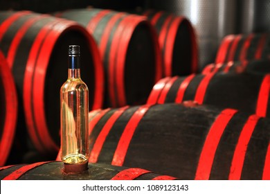 Wine barrels in wine-vaults in order with glass of wine