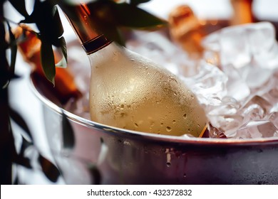 Wine bottle in ice bucket