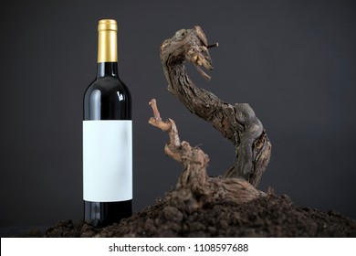 Wine bottle Isolated vine in a Black Background