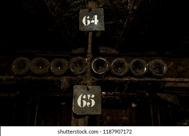 Wine cellar of pinot noir in burgundy