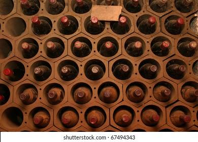 Wine cellar in a restaurant with spider web.