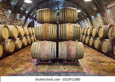 Wine cellar with a row of oak barrels